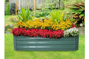 12 Tips on How To Use Color Effectively In The Garden